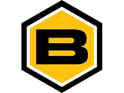 Buzz_Logo_Bug_v2-011